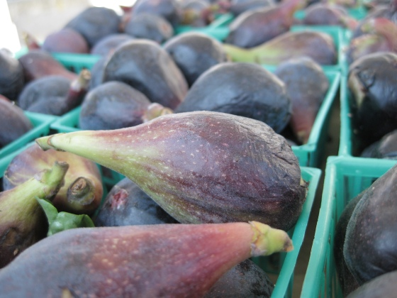 The Figs of June