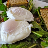 Dandelion Greens Salad w/ Poached Egg