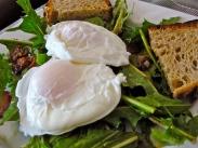 Dandelion Greens Salad w/ Poached Egg