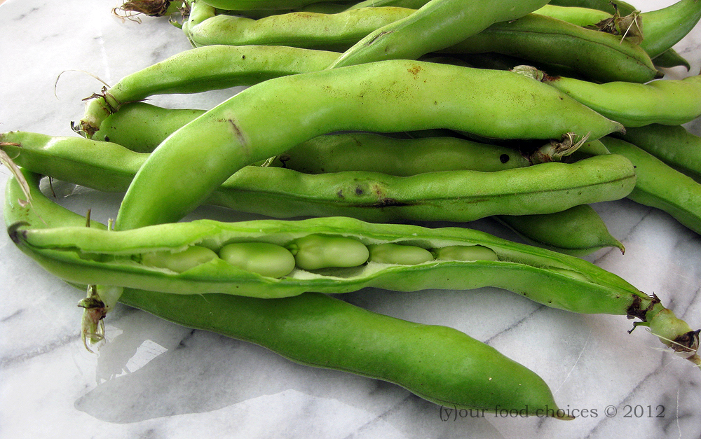 how to cook fresh fava beans