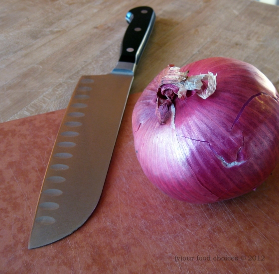 050412 red onions 02